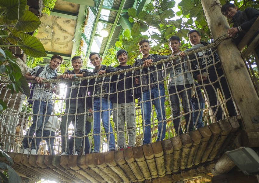 Asylum seekers stand on bridge among the exotic wildlife in the greenhouse of Vienna's Haus des Meeres.